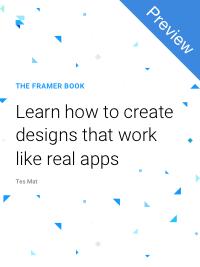 The_Framer_Book_Preview_smaller